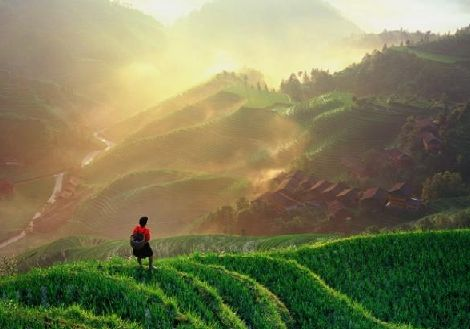Ping An Rice Terrace