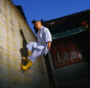 Chinese Kung Fu Night Show